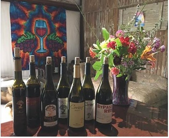 Amador City, Californien: Wine Lineup with our Tie Dye backdrop