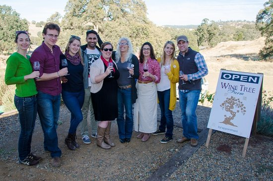 Amador City, Californien: Wine Club members at the pick up party