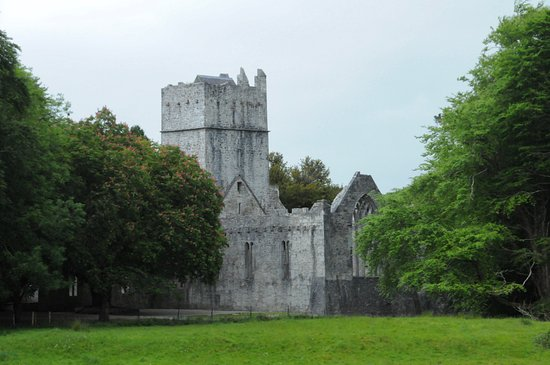 Muckross Abbey roof gone but a lot of the structure remains & roof gone but a lot of the structure remains - Picture of Muckross ... memphite.com