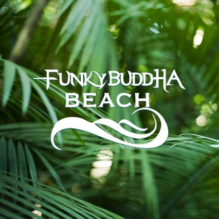 Funky Buddha Beach
