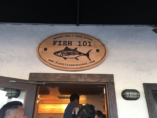 fish 101 encinitas restaurant reviews phone number