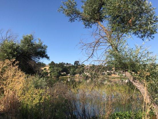 Atascadero Lake Park : photo4.jpg