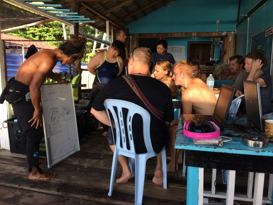 Angel Divers: Always busy with ocean lovers