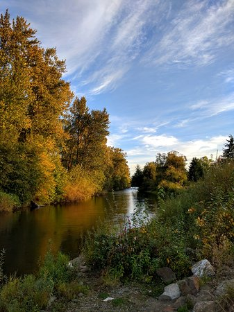 Auburn, WA: The Green River where it runs through Brannan Park
