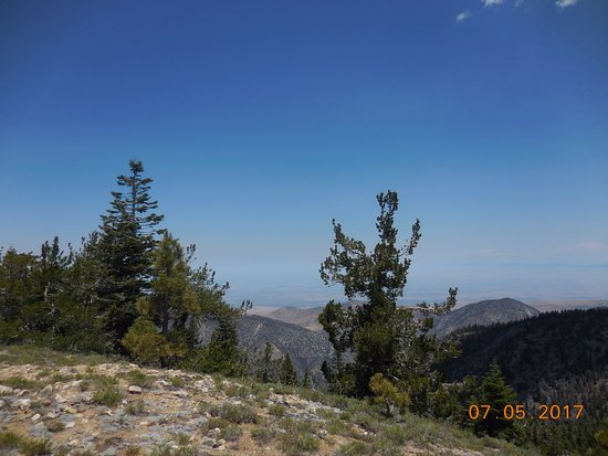 Frazier Park, CA: View at the Summit in early July