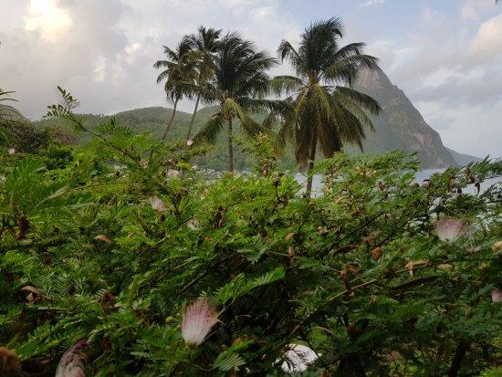 منتجع شاطئ همينجبيرد: View from my bedroom
