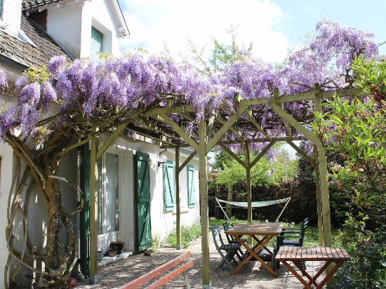 le patio sous la glycine photo de chaumont sur loire loir et cher tripadvisor. Black Bedroom Furniture Sets. Home Design Ideas