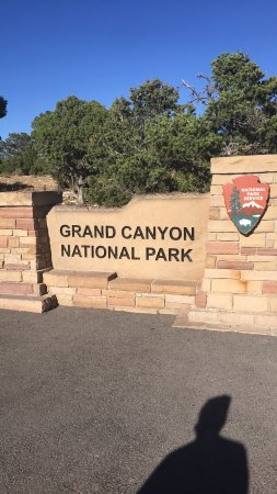 Highest Rated Helicopter Tours Grand Canyon