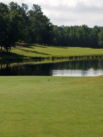 Dormie Golf Club