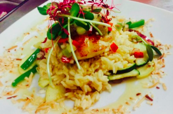 Fish: Our Awesome Dinner Specials and Ceviche's
