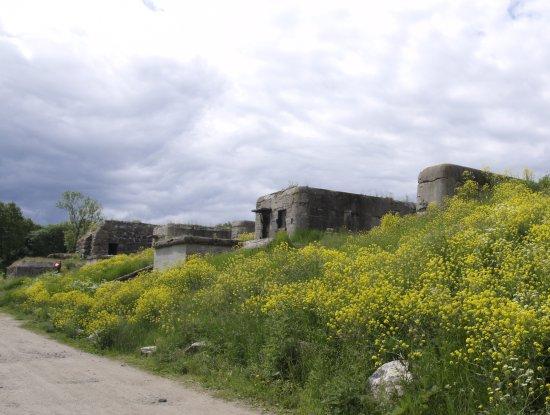 Shants Fort