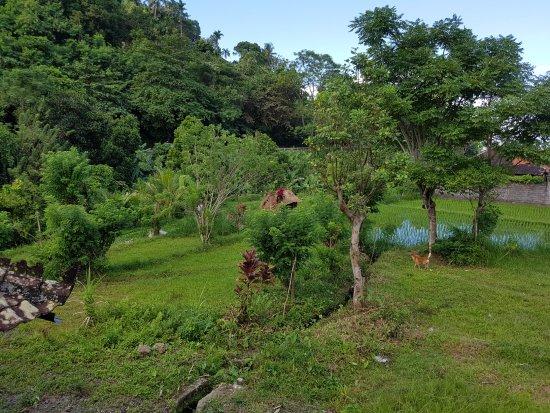 Subagan, Indonesia: Vue sur la campagne