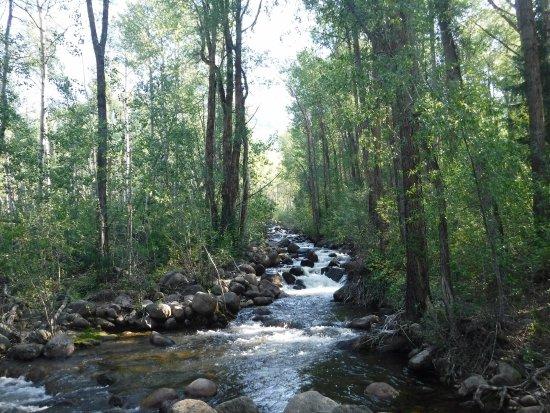 Hunter Creek Trail