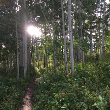 The Westin Snowmass Resort: Early morning hike, Elbert Lane trailhead