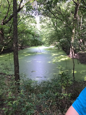 Pittsburg, KS: The map, type of path, creek views