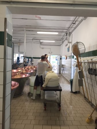 Noceto, Włochy: The cheese masters hard at work