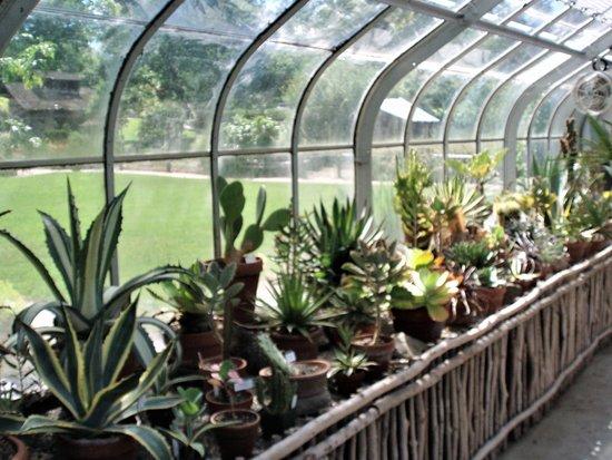 Astonishing Desert Greenhouse Picture Of Berkshire Botanical Garden Home Interior And Landscaping Oversignezvosmurscom