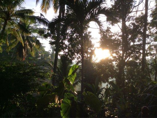Beautiful Bali!