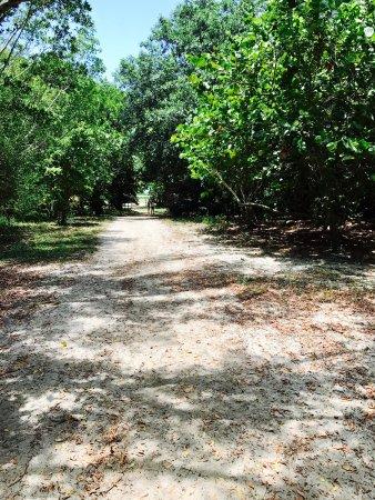 Historic Virginia Key Beach Park: photo7.jpg