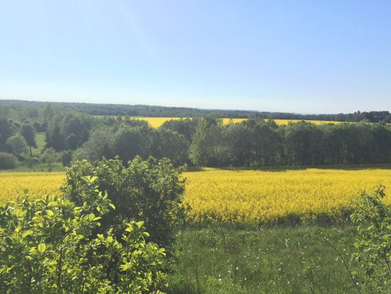 Ida-Viru County, Estonia: Scenic view as you climb to park
