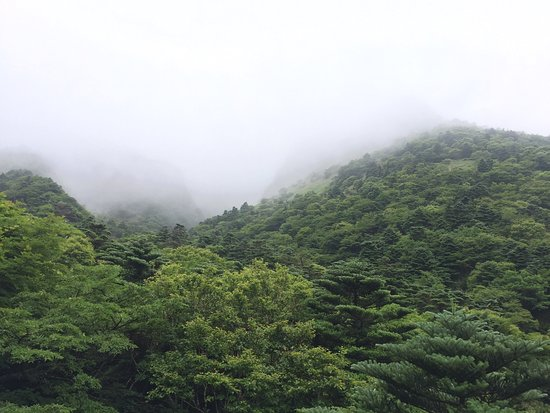 Hallasan National Park: photo4.jpg