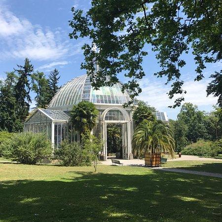 Conservatoire et jardin botaniques de la ville de gen ve for Jardin botanique geneve
