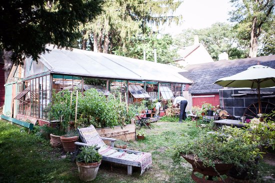 Sheffield, MA: The Greenhouse supplies our farm with starter plants & our kitchen with herbs.