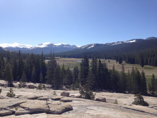 Explore Tuolumne Meadows With Us  Picture Of Mammoth All