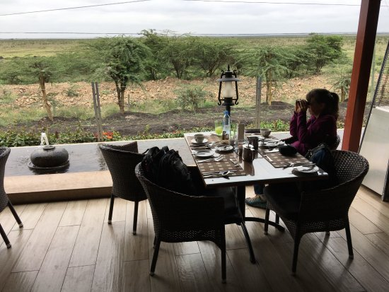 Ole Sereni: The patio for breakfast. Bring your binoculars!