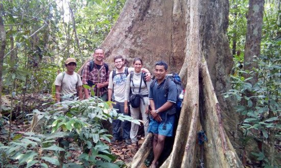 Green jungle Trekking-Tours