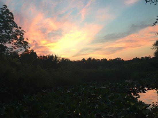Cuyahoga Falls, OH: Beaver Marsh Sunset