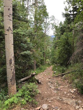 Taos Ski Valley: photo7.jpg