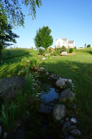 Williamsburg, MI: View from pond back up to the house
