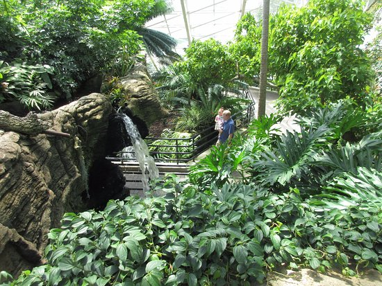 Another View Picture Of Foellinger Freimann Botanical Conservatory Fort Wayne Tripadvisor