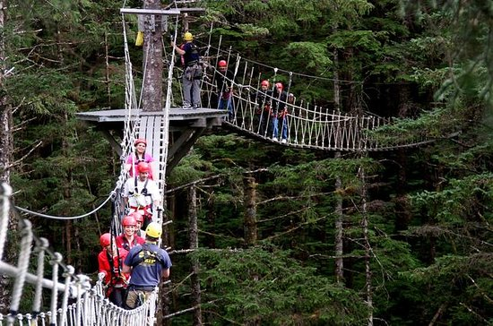 Tongass Rainforest Canopy, Zipline...