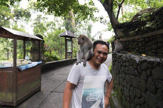 Raja Bali Tour
