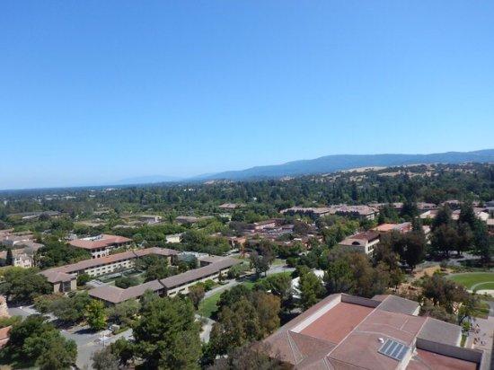 Пало-Альто, Калифорния: photo1.jpg