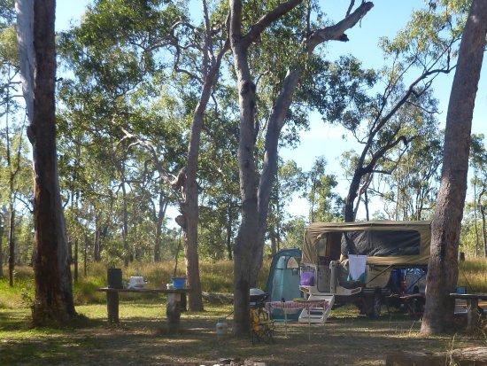 Ravenshoe, Австралия: Campsite