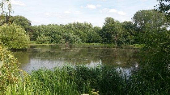 Renishaw, UK: The lake