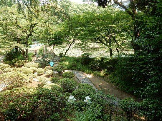 Jardin koishikawa k raku en photo de koishikawa korakuen for Jardin korakuen