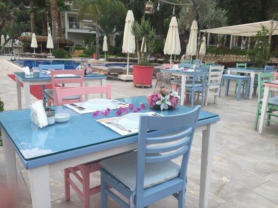Hotel Morina: photo9.jpg