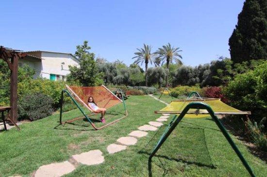 Jordan Valley-bild
