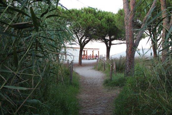 Camping village pedra e cupa hotel budoni sardegna for Alloggi budoni