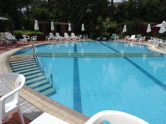Hotel Pineta Picture