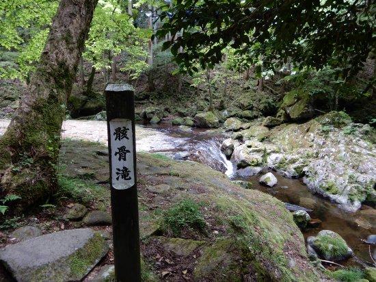 Nabari, Japan: 赤目四十八瀑布