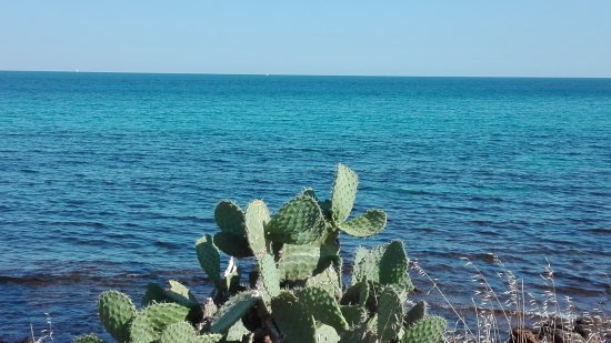 Isola di Capo Passero: IMG_20170705_170025_large.jpg