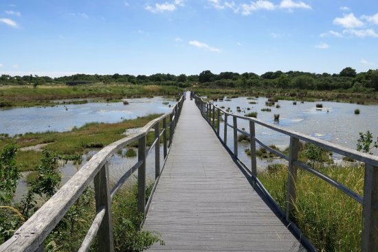 Sene, Frankrijk: Boardwalk across marshes