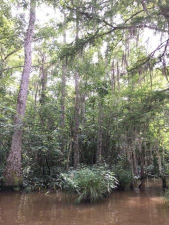 Slidell, Louisiane : photo2.jpg