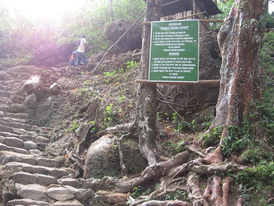 Mawlynnong Waterfall: Route to Root Bridge