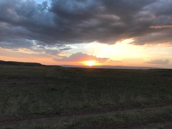 Mara Crossings Camp: photo5.jpg